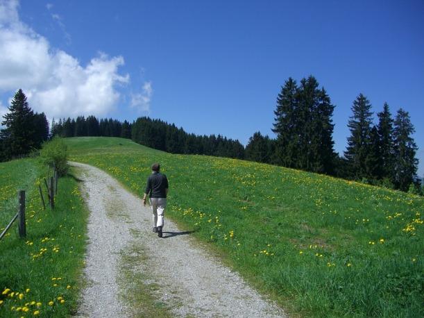 hiking-245351_960_720
