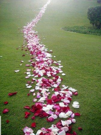 """Résultat de recherche d'images pour """"walking in the path of love"""""""